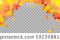 Falling autumn maple leaves on transparent background 59230881