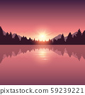beautiful lake and pine forest nature landscape 59239221