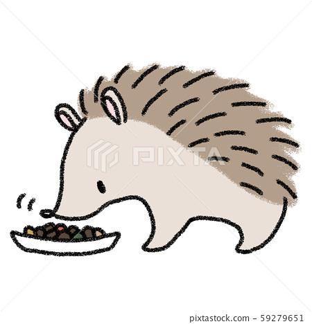 Hedgehog eating rice 59279651