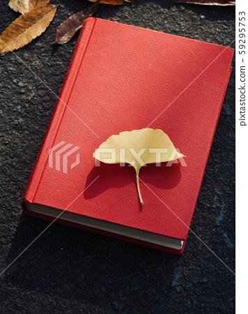 책과 가을 단풍잎, 은행나무잎, 낙엽 59295753