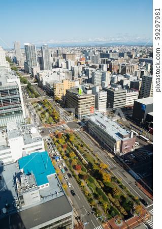 Sapporo's streets 59297981