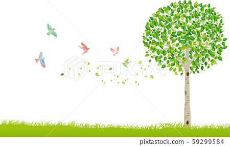 Tree: Tree trunk Branch nature Green leaf Fresh green Sprout Early summer Summer Spring Eco green 59299584