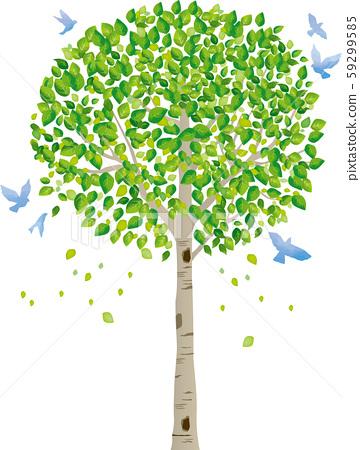 樹:樹幹樹枝性質綠葉新鮮的綠色新芽初夏夏季春季生態綠 59299585