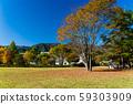 야마나시 현 가을 가와구치 미술관 잔디 광장 59303909