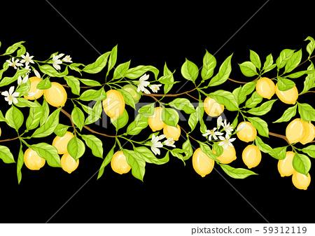 Lemon tree branch with lemons 59312119