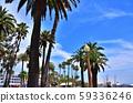Santa Monica landscape, California, USA 59336246
