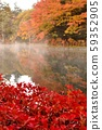Autumn leaves of the cloud pool pond 59352905