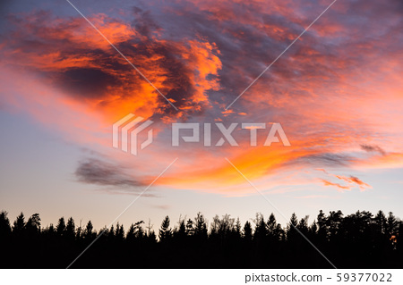 Sunset over forest with dramatic sky 59377022