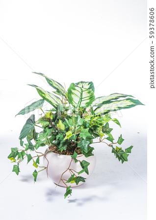 plastic plant 59378606