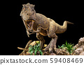 Tyrannosaurus rex . T-rex is walking , growling 59408469