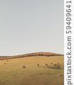 landscape in field with copy space. deer in a hill. Minimal view scenic with animal and mountain. vertical backgrounds. 59409641
