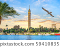 Seagull and Cairo TV Tower 59410835