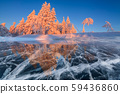 Beautiful winter sunset in the forest on the shore of a frozen lake. 59436860
