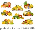 Fruit and berry icons. Exotic fruity food 59442906