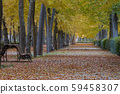 path in the gardens of the royal site of Aranjuez. 59458307