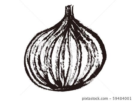 Onion watercolor 59484001