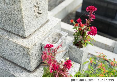 參觀墳墓 59514999