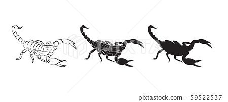 Vector of scorpions isolated on white background. 59522537