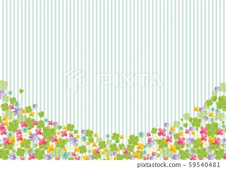 春天:春天背景四葉草三葉草花多彩 59540481