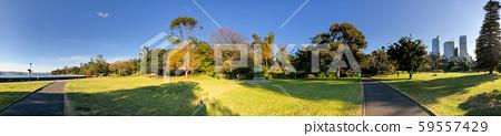 Panoramic view of Royal Botanic Gardens in Sydney, 59557429