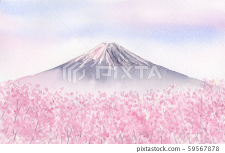 Mount Fuji and cherry blossoms in full bloom 59567878