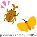딱정벌레와 나비 59568052