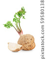 Fresh celery root with leaf isolated on white background 59580138