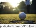 Golf ball putting on green grass near hole golf to 59584643
