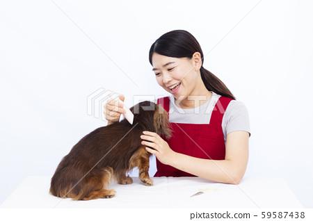 애완 동물 트리밍 59587438
