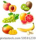 Realistic Fruits Set 59591239