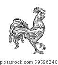 Rooster. Vintage black vector engraving 59596240