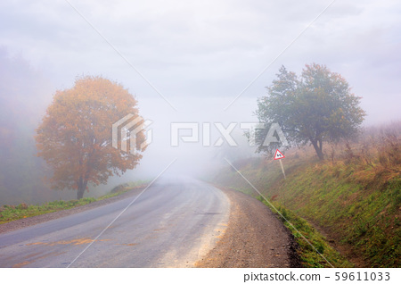 country road through forest in foggy weather 59611033