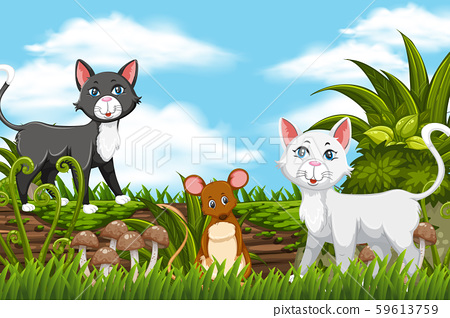 Cats and mouse in jungle scene 59613759
