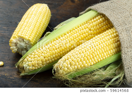 heads of corn on the table 59614568