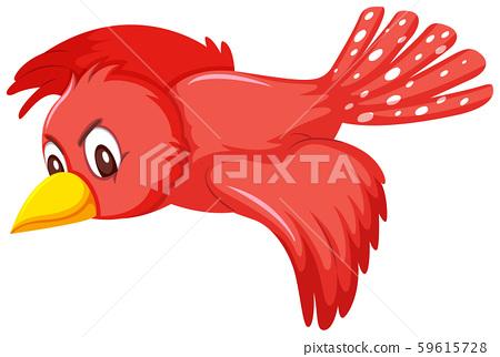 A cute red bird flying 59615728