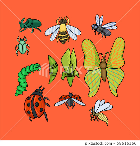 Set of different insects. Vector drawing illustration 59616366