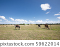 French countryside landscape 59622014