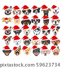 Illustration Merry Christmas with dogs 59623734