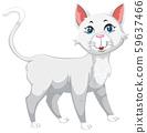 White cute pet cat 59637466