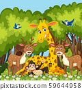 Happy animal in the jungle 59644958