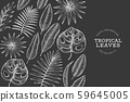Tropical plants banner design. Hand drawn tropical 59645005