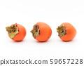 Persimmon (variety: beehouse): Persimmon (cv. Hachiya) 59657228
