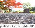 가을 단풍 낙엽 59665305