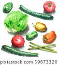Salad vegetables painted in watercolor 59673320