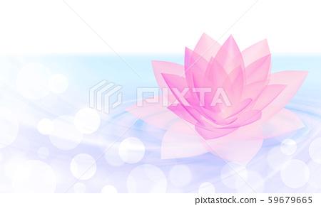수면에 떠있는 분홍색 연꽃 59679665