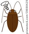 蟑螂的例證 59690429