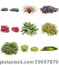 彩葉花園組種植 59697870