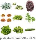 彩葉花園組種植 59697874