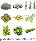 彩葉花園組種植 59697875