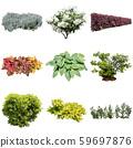 彩葉花園組種植 59697876